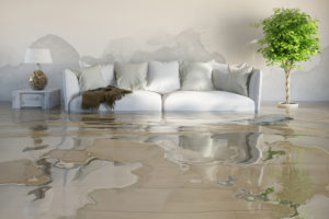 Water Damage to House after flood, insurance.